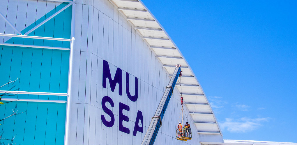 Installing the new MUSEAUM logo. Photo: Kate Pentecost