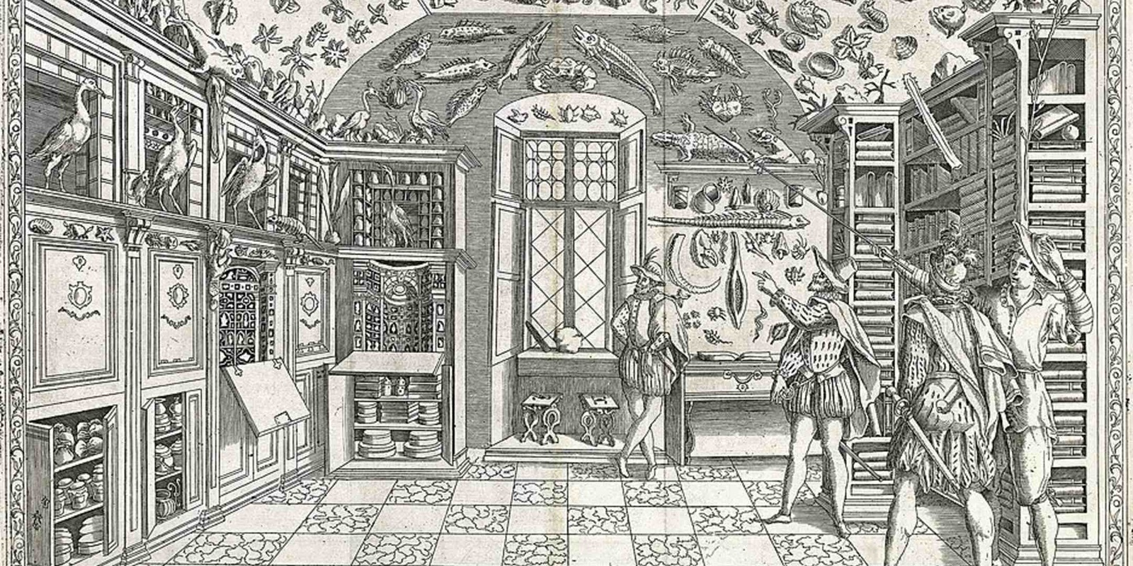 Fold-out engraving from Ferrante Imperato's Dell'Historia Naturale (Naples 1599), the earliest illustration of a natural history cabinet. Source: Wikimedia