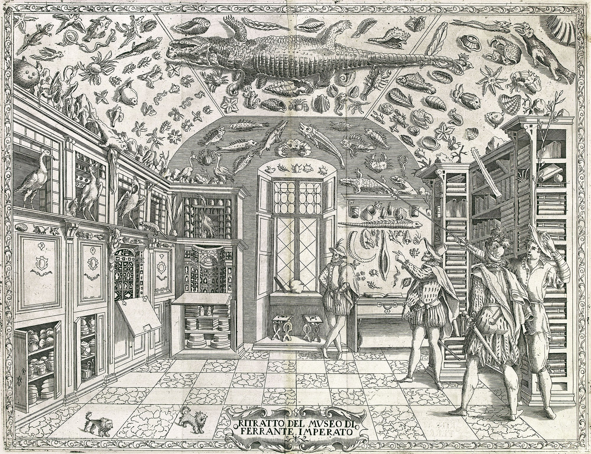 Fold-out engraving from Ferrante Imperato's Dell'Historia Naturale (Naples 1599), the earliest illustration of a natural history cabinet. Source: Wikimedia.
