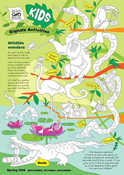 Kids Activity Sheet Wildlife Wonders