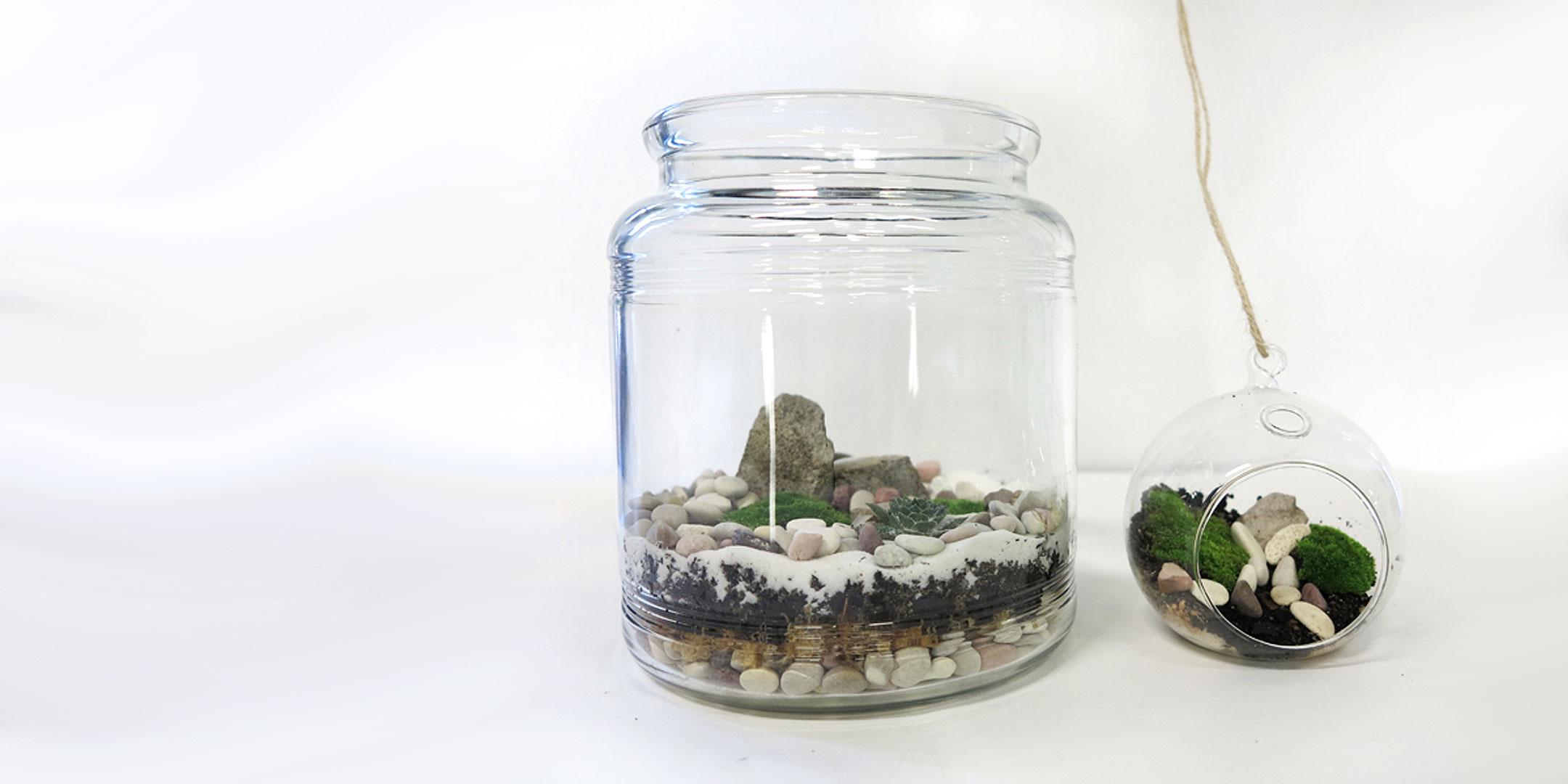How To Make A Miniature Garden Terrarium Australian National Maritime Museum
