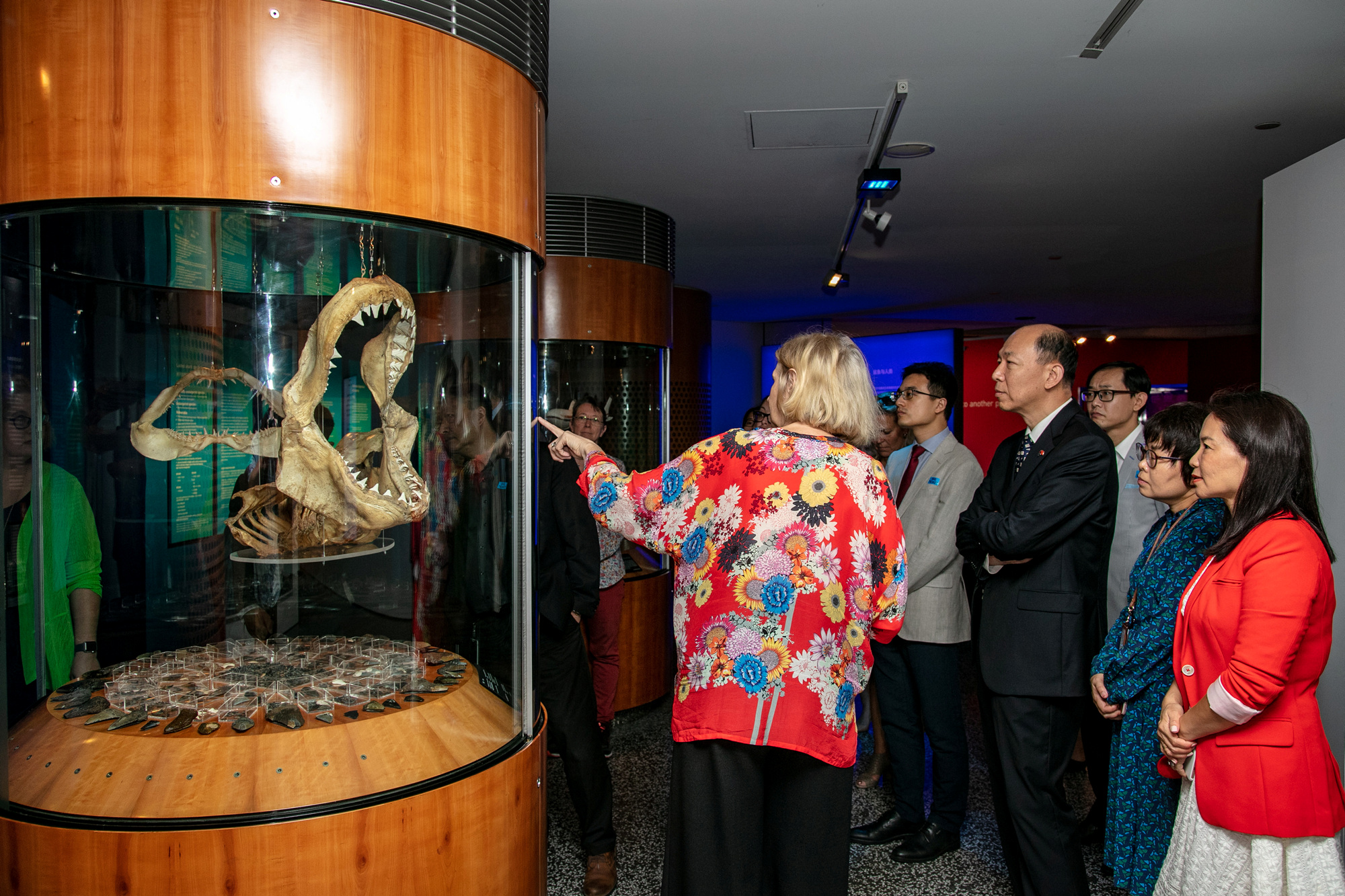 Senior Curator Daina Fletcher leading a tour for the exhibition 'On Sharks and Humanity', February 2019