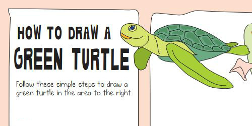 draw a turtle