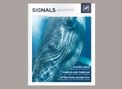 Signals Magazine Issue 106