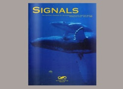 Signals Magazine Issue 31