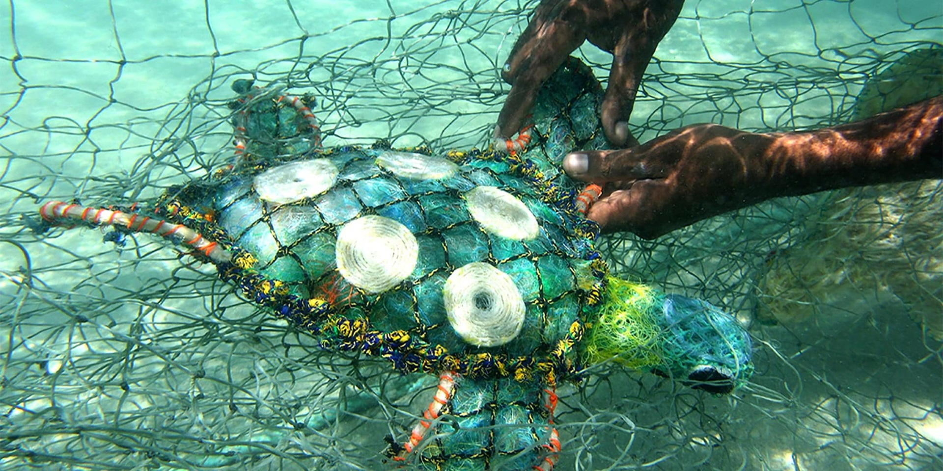 Ghost nets - turtle, by Erub Arts.