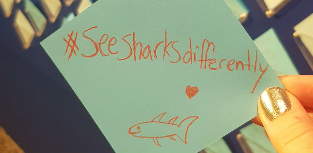 When you visit our On Sharks & Humanity exhibition, be sure to leave a note to share your thoughts. Paper & pencils provided!